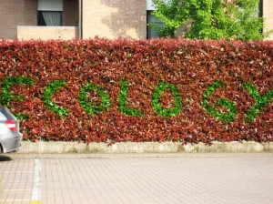 "Dario Tironi, ""Ecology"", 2012, spray on hedge, (print on alluminium)"